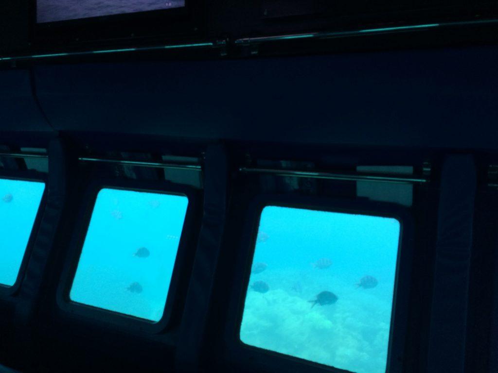 沖縄の海底巡り07